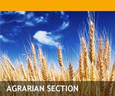 Agrární sekce