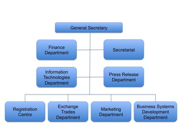 Organizacni schema EN
